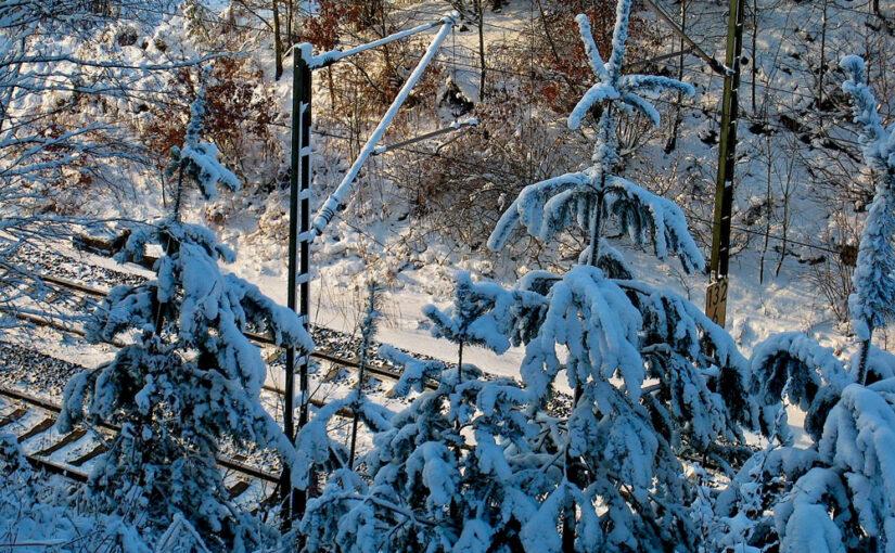 kalter Winter mit Schnee und Eis