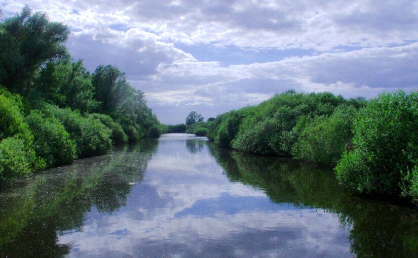 Naturschutzgebiet am Dümmer.